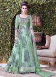 Soothing Green Net Embroidered Work Designer Gown