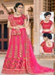 Amazing Rani Silk Embroidery Work Lehenga Choli